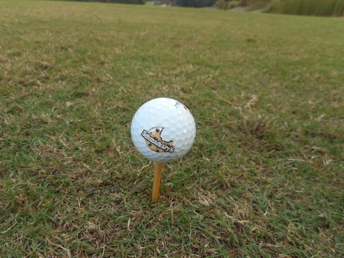 Schmackary's golf ball